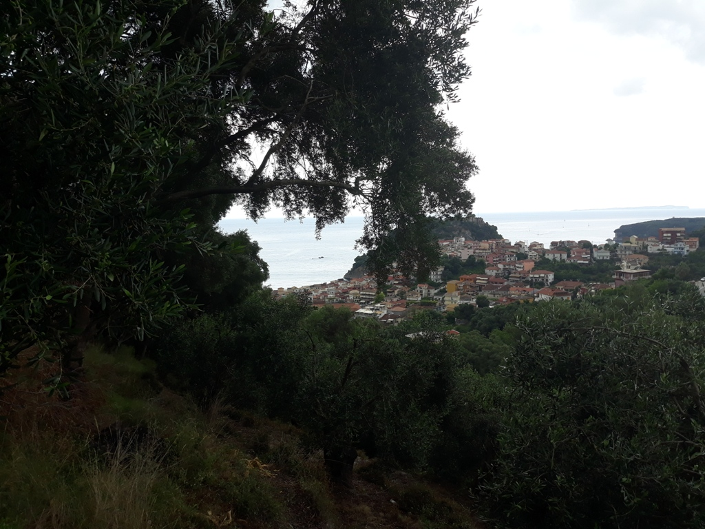 Land of 4.300m² with amazing view in Parga.